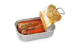 Lata de sardinas en salsa de tomate Foto de archivo libre de regalías