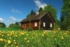 Lata dom na wsi kwiaty Fotografia Royalty Free