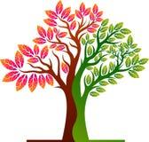 Lata drzewa logo ilustracji