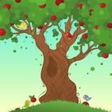 Lata drzewa tło Zdjęcie Royalty Free