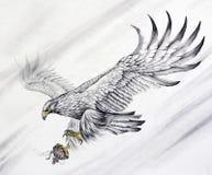 Latać Eagle zdjęcia royalty free