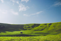 Lata haystack i góry Zdjęcie Royalty Free