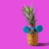 Lata i wakacje pojęcie Modniś mody Ananasowi akcesoria fotografia stock