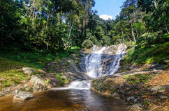 Lata Iskandar Waterfall Cameron Highlands Stock Afbeelding