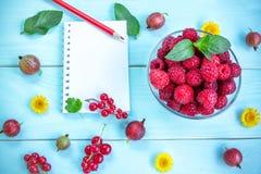 Lata jagody, notepad i ołówek, Obraz Royalty Free