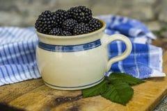 Lata, jesieni żniwa sezonowy owocowy pojęcie/ Czernicy obraz stock