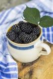 Lata, jesieni żniwa sezonowy owocowy pojęcie/ Czernicy obrazy stock