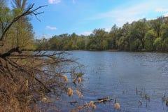 Lata krajobraz, rzeka i drzewa, Zdjęcia Royalty Free