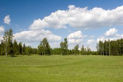 lata krajobrazu Fotografia Stock