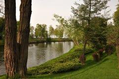 Lata krajobrazu, drzew, rzeki i parka gazony, Obrazy Royalty Free