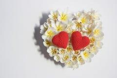 Lata kwiecisty serce z kwiatami Zdjęcia Stock