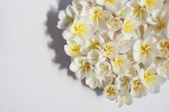 Lata kwiecisty serce z kwiatami Zdjęcia Royalty Free