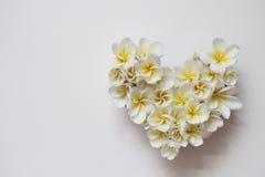 Lata kwiecisty serce z kwiatami Zdjęcie Stock