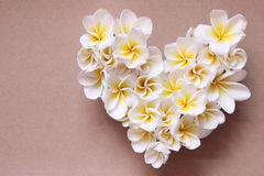 Lata kwiecisty serce z kwiatami Obrazy Royalty Free