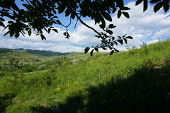Lata lanscape w wzgórzach Zdjęcie Stock