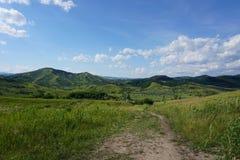Lata lanscape w wzgórzach z wysoką trawą Fotografia Royalty Free