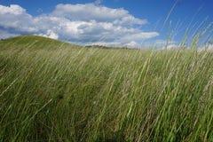 Lata lanscape w wzgórzach z wysoką trawą Obraz Royalty Free