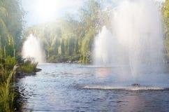 Lata miasta park z świeżymi fontannami w jeziorze Mezhyhirya w Novi Petrivtsi, Ukraina Fotografia Stock