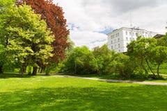 Lata miasta park z drzewami i zielonym gazonem Obrazy Royalty Free