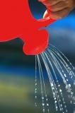 Lata molhando Fotografia de Stock