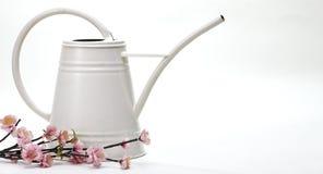 Lata molhando com flor Imagem de Stock Royalty Free