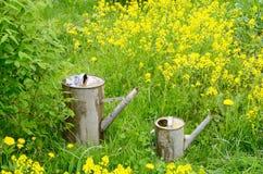 Lata molhando de dois jardins Imagem de Stock