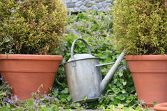 Lata molhando do jardim Fotografia de Stock Royalty Free