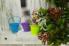 Lata molhando do jardim diminuto colorido em um fundo dos arbustos foto de stock