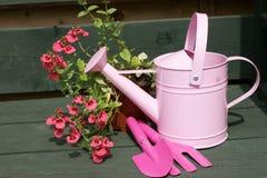 Lata molhando e ferramentas da cor-de-rosa de Childs Fotos de Stock