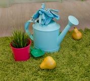 Lata molhando e ferramentas de jardim Fotos de Stock