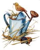 Lata molhando velha com um ninho de ovos azuis ilustração stock