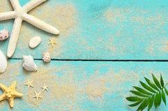 Lata morza tło Seashells, rozgwiazda i palma, rozgałęziają się na drewnianym błękitnym tle zdjęcie royalty free