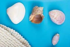 Lata morza wakacje mockup tło Notatnik pusta strona z podróży rzeczami na błękita stole Morze skorupy, otoczaki, wierzchołek Zdjęcia Royalty Free