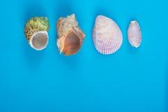 Lata morza wakacje mockup tło Notatnik pusta strona z podróży rzeczami na błękita stole Morze skorupy, otoczaki, wierzchołek Obraz Royalty Free