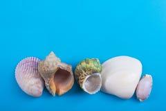 Lata morza wakacje mockup tło Notatnik pusta strona z podróży rzeczami na błękita stole Morze skorupy, otoczaki, wierzchołek Zdjęcia Stock