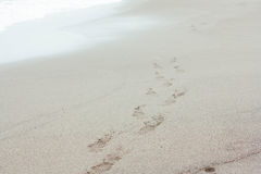 Lata morze relaksuje wakacje Obrazy Royalty Free