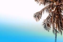 Lata niebo na plaży Zdjęcie Stock