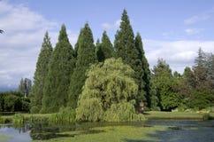 lata ogrodu zdjęcie royalty free