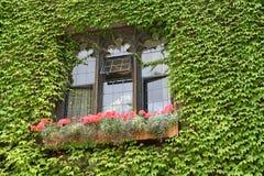 lata okno Zdjęcie Royalty Free