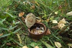 lata oxidada en el bosque imagen de archivo