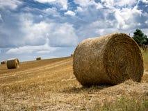 Lata pole z siano belami pod burz chmurami Rolnictwo Conc fotografia stock