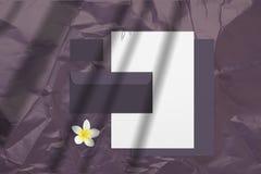 Lata pusty oznakuje mockup z purpurowymi wizytówkami, kopertami i notepads odizolowywającymi na lekkim tle, obraz royalty free