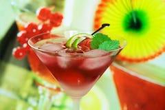 lata rekreacyjne napojów alkoholowych Fotografia Stock