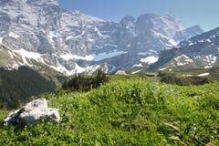 lata szwajcarskie alpy Obraz Stock