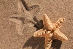 Lata tło Lat akcesoria, lata pojęcie Rozgwiazda z piaskiem jako tło Zdjęcia Royalty Free
