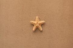 Lata tło Lat akcesoria, lata pojęcie Rozgwiazda z piaskiem jako tło Obraz Royalty Free