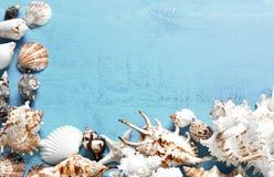 Lata tło, morze łuska na błękitnym drewnie, odgórny widok, kopii przestrzeń Fotografia Stock