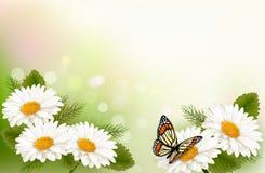 Lata tło z żółtymi pięknymi kwiatami Obrazy Royalty Free