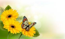 Lata tło z żółtymi pięknymi kwiatami i motylem Fotografia Stock