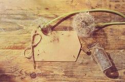 Lata tło z dandelion i małą butelką Zdjęcie Stock